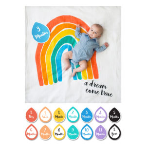 mary meyer lulujo baby's first year milestone set