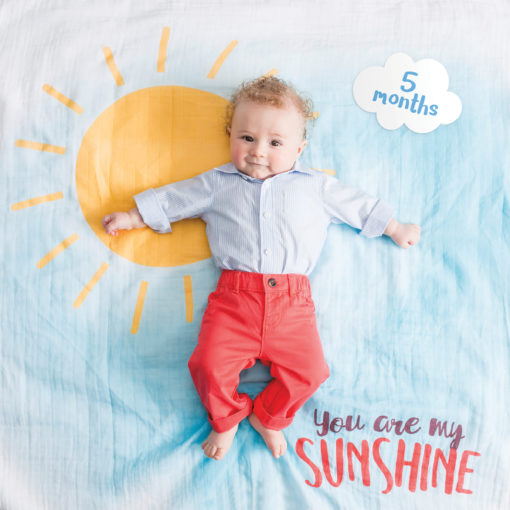 "LJ588 ""You Are My Sunshine"" Baby's First Year Blanket & Cards Set"