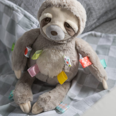 40241 Taggies Molasses Sloth Soft Toy