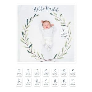 Lulujo Baby's First Year - Hello World