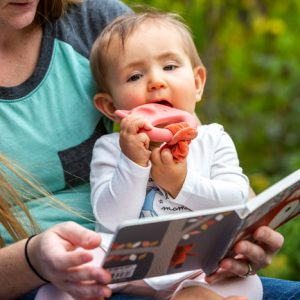 26111 26113 Leika Little Fox Board Book Teether