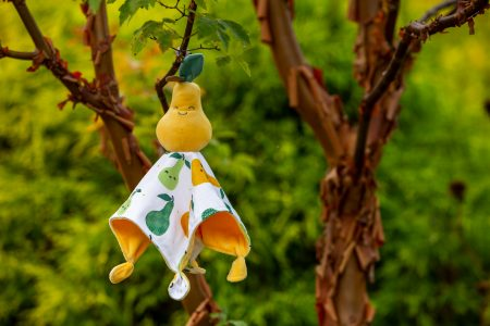 44210 Sweet Soothie Pear Blanket