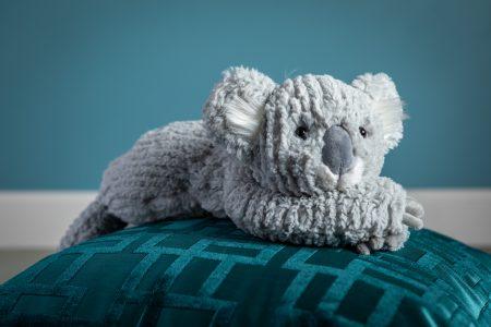 27220 Cozy Toes Koala